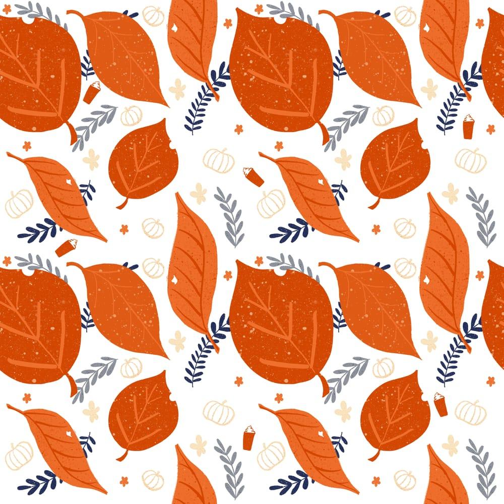 Fall Foliage - image 2 - student project