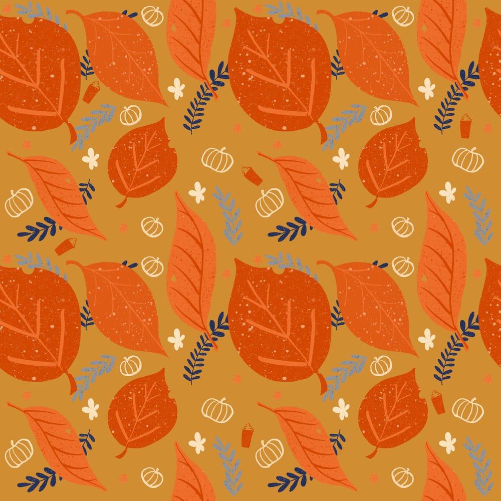 Fall Foliage - image 3 - student project