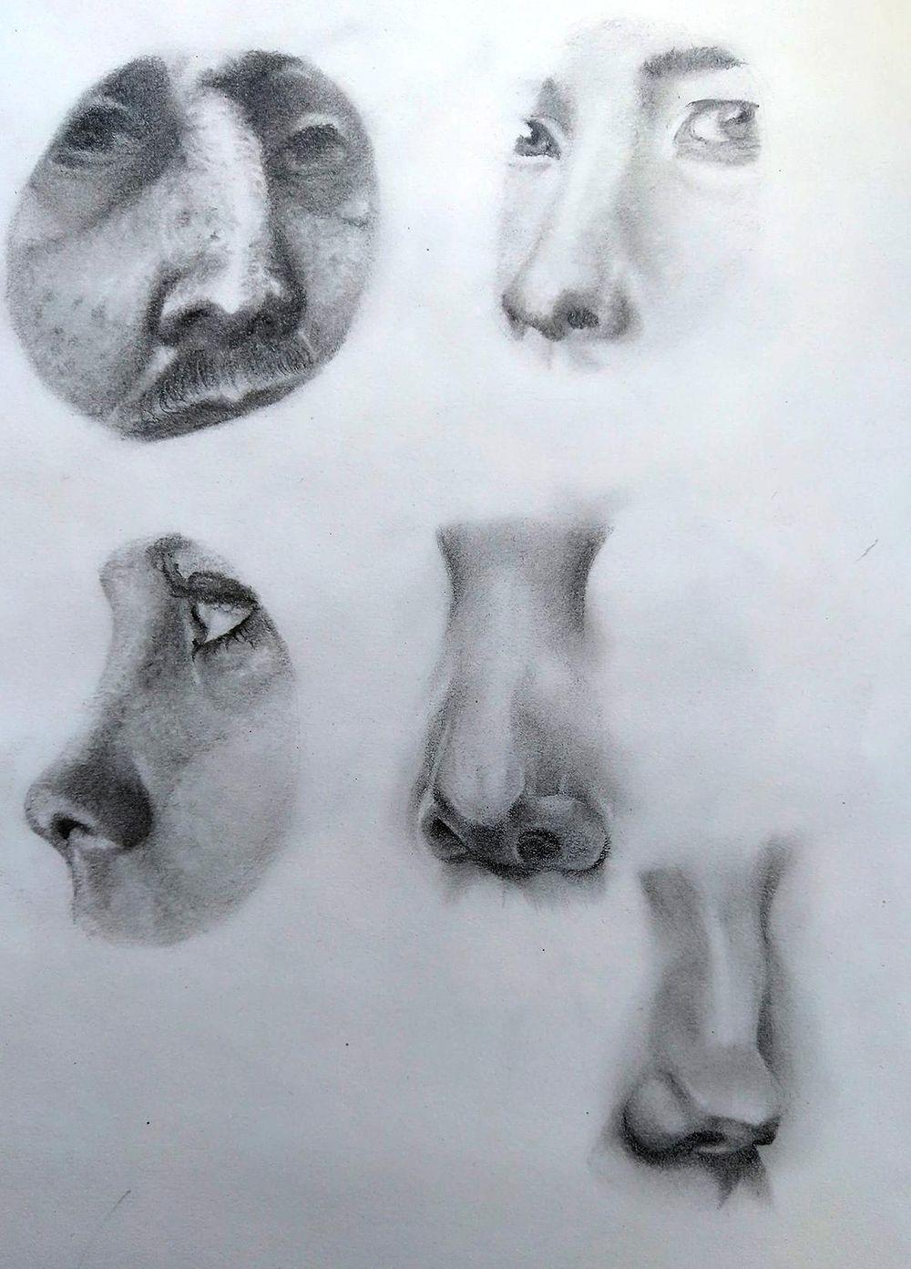 Pencil Portrait - practice - image 7 - student project