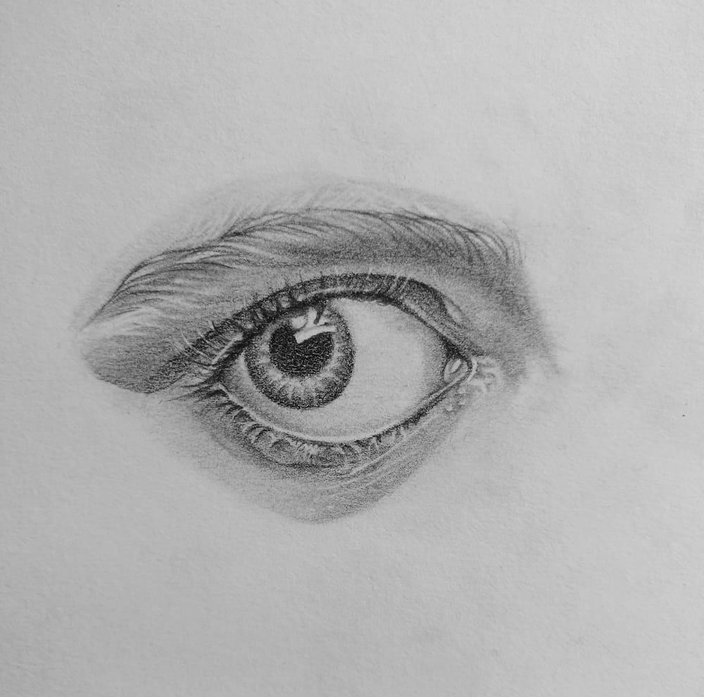 Pencil Portrait - practice - image 3 - student project