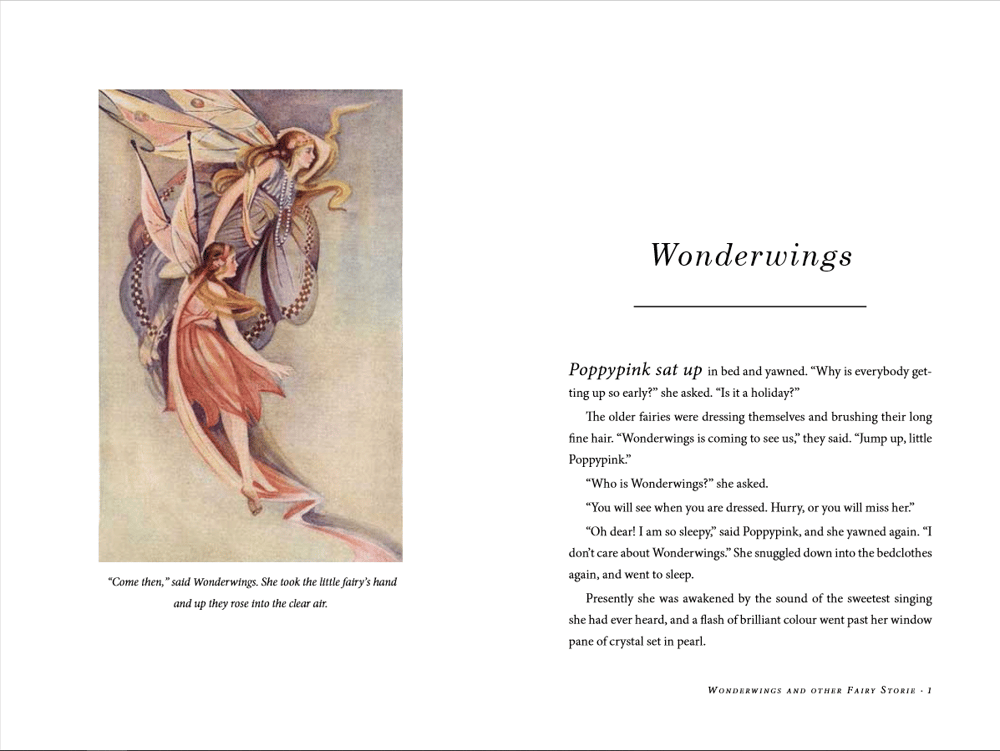Wonderwings book design - image 3 - student project