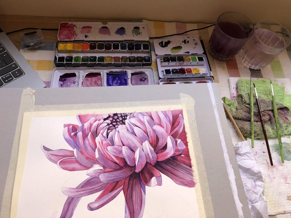 Chrysanthemum - image 4 - student project