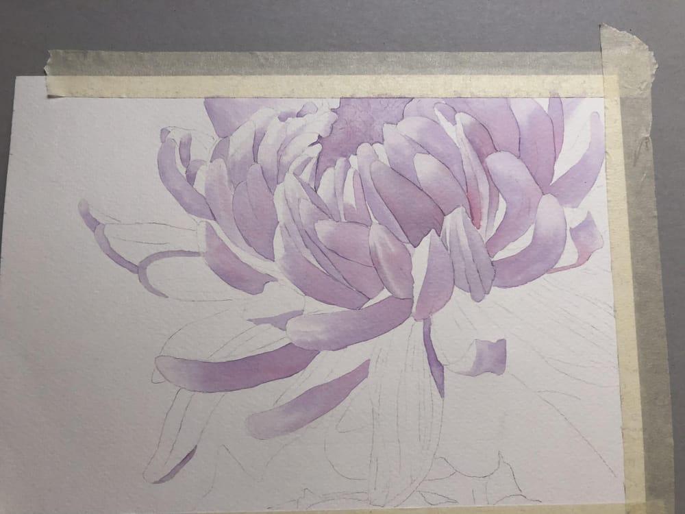 Chrysanthemum - image 2 - student project