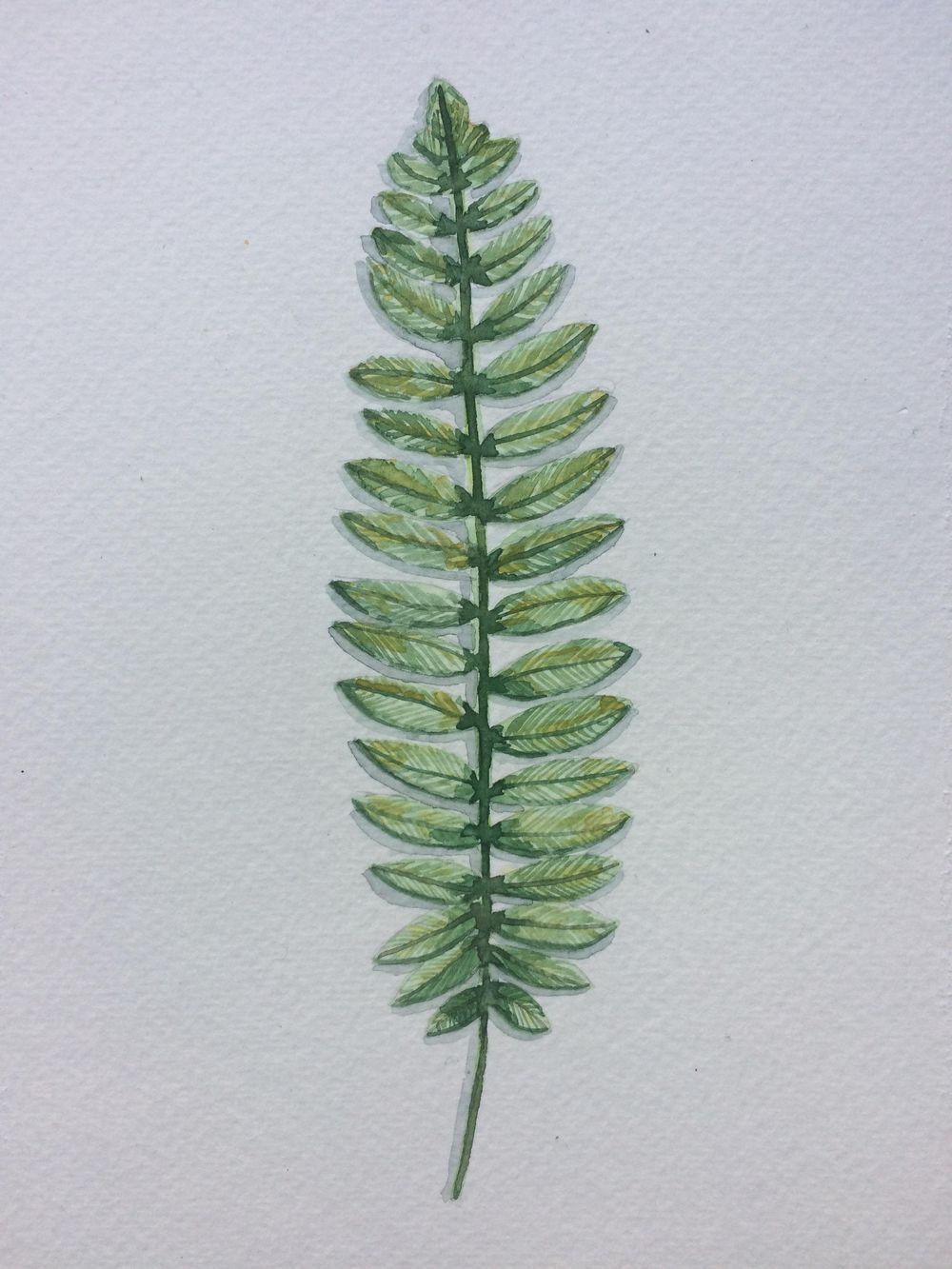 Mushroom n leaf! - image 2 - student project