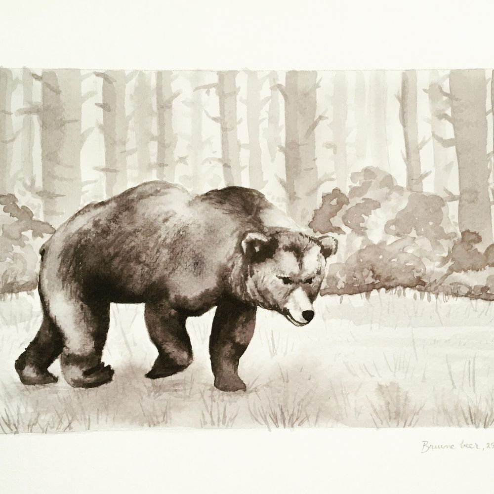 Bear and deer - image 1 - student project