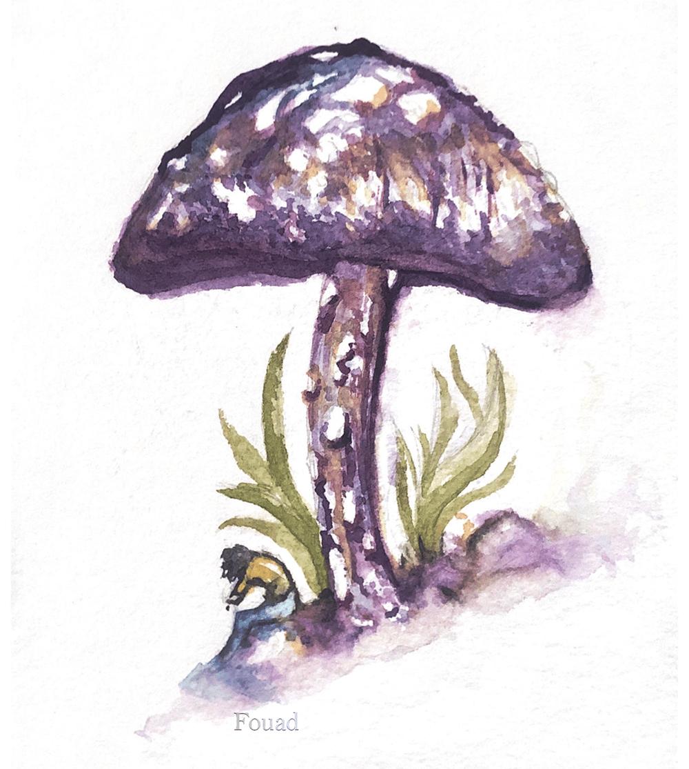 My Little Mushroom - image 1 - student project