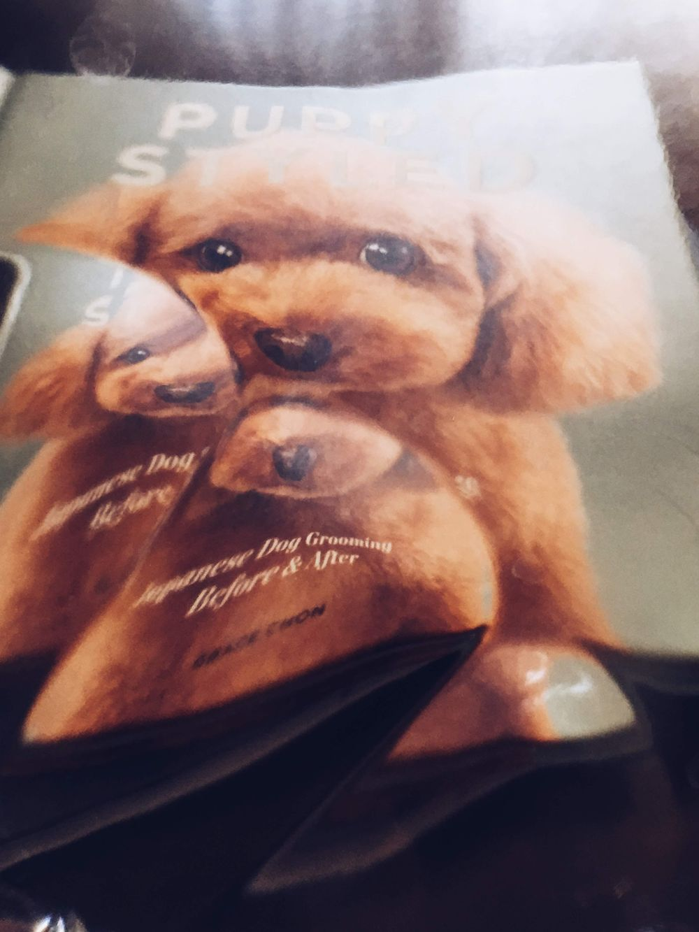 Puppy Styled shot through a drinking glass! - image 3 - student project