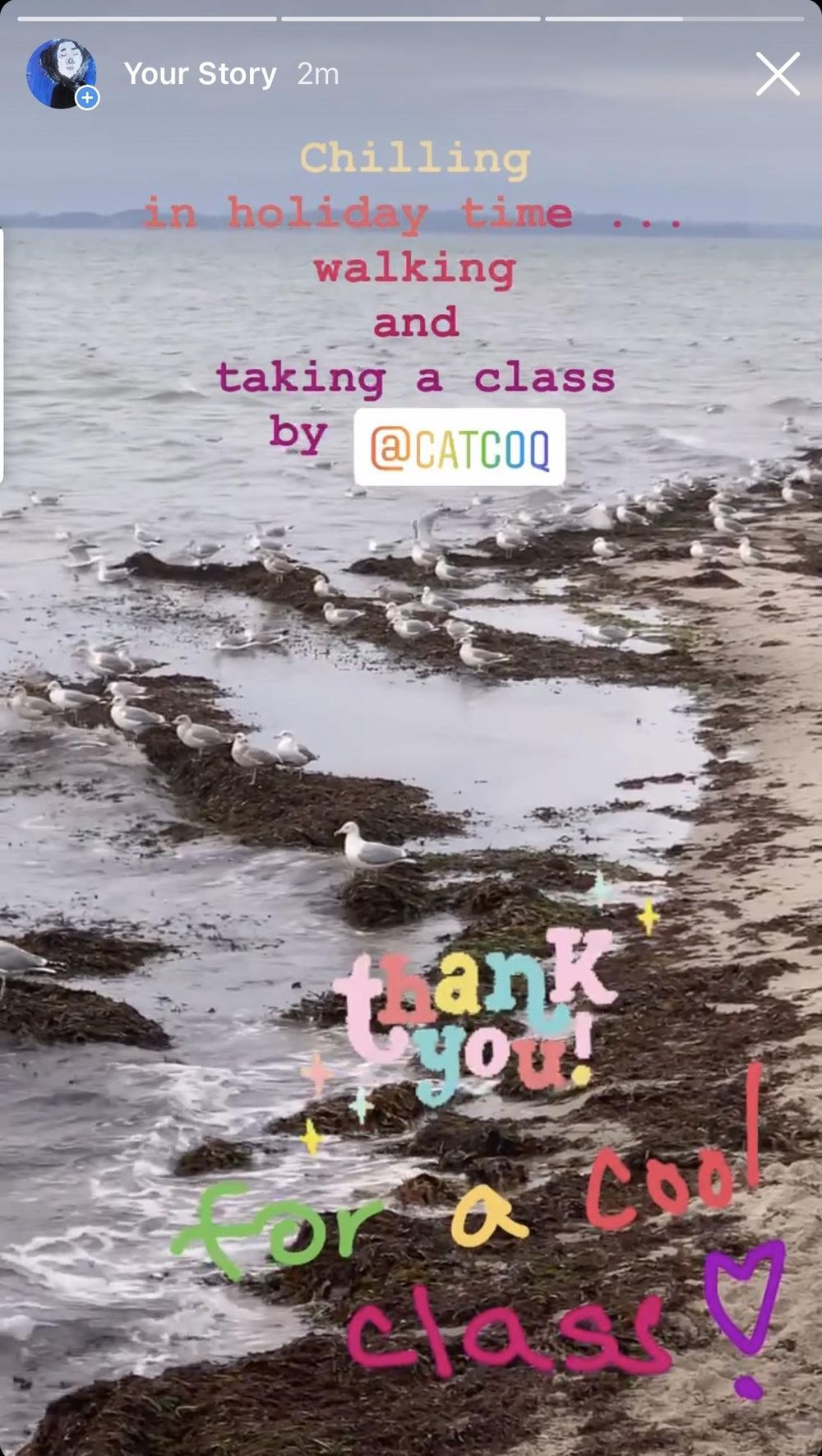 Thank you for a cool class! - image 1 - student project