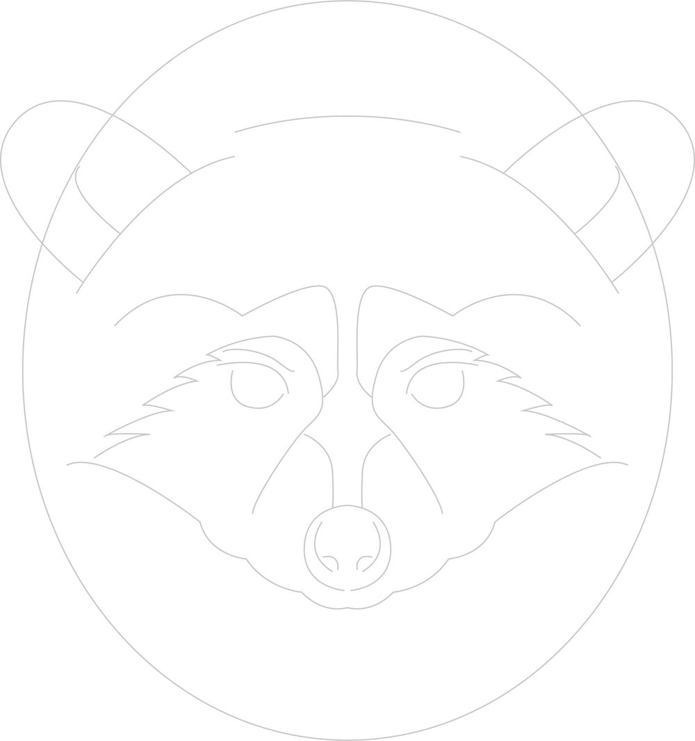 Raccoon Logo - image 2 - student project