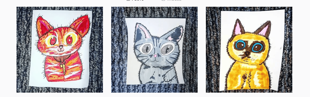my cats - image 1 - student project