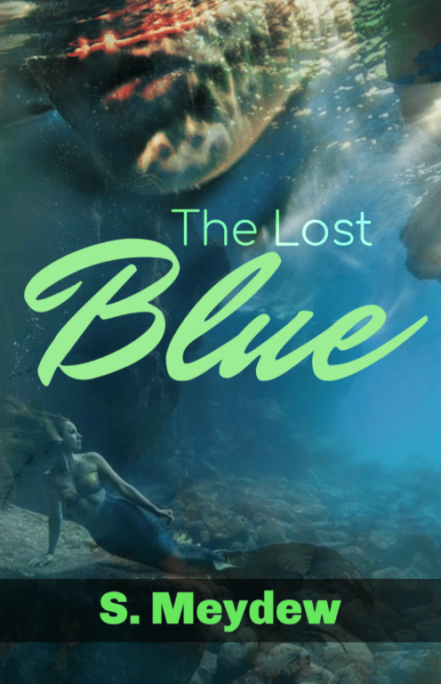 The Lost Blue - image 1 - student project