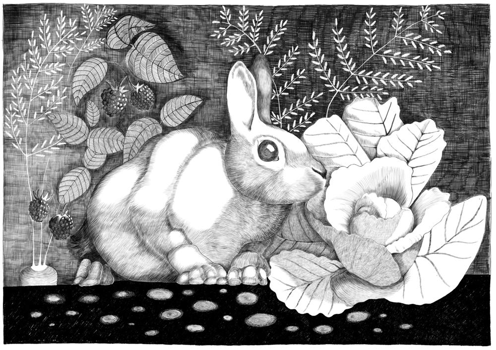 Rabbit escape - image 4 - student project