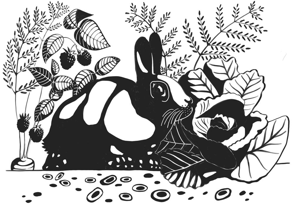 Rabbit escape - image 2 - student project