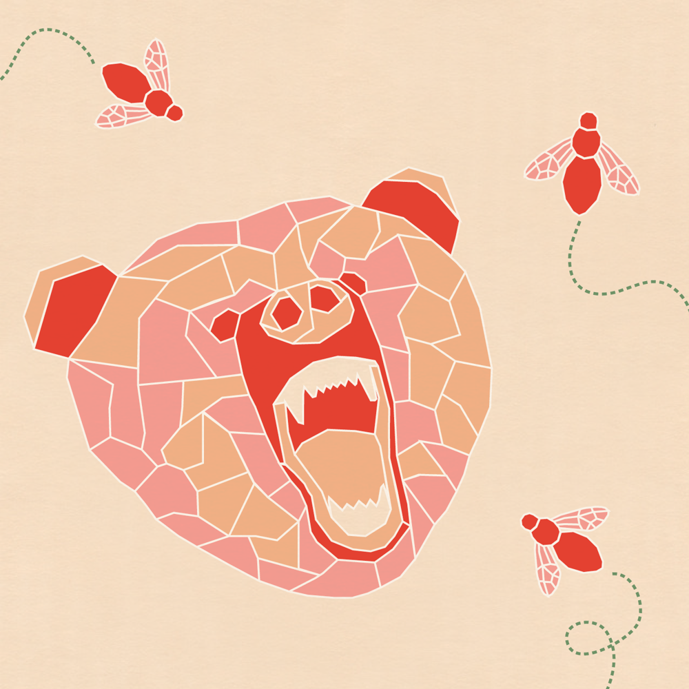Vector Bear - image 4 - student project