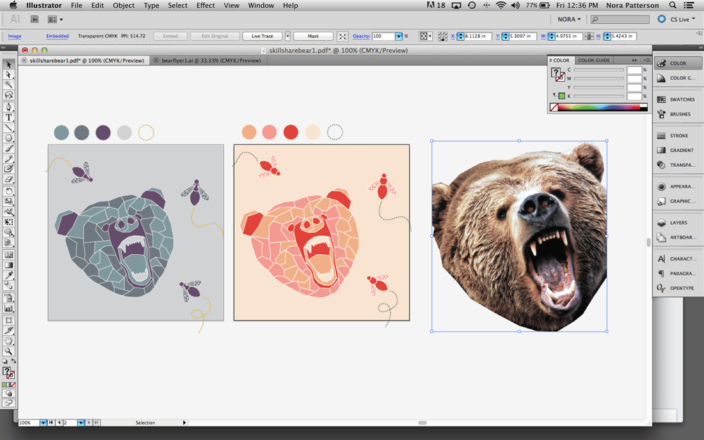 Vector Bear - image 2 - student project
