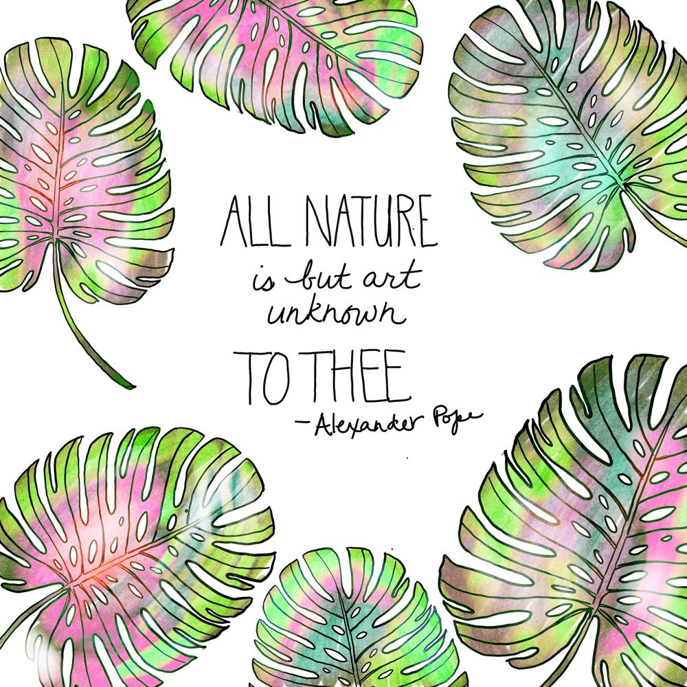 Botanical & Quote - image 1 - student project