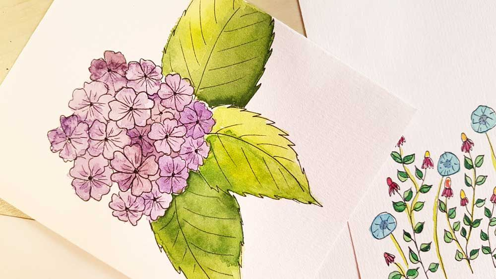 Botanical Line Drawings on Postcards - image 10 - student project