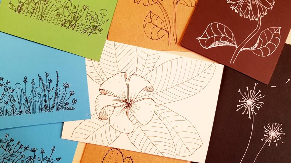 Botanical Line Drawings on Postcards - image 8 - student project