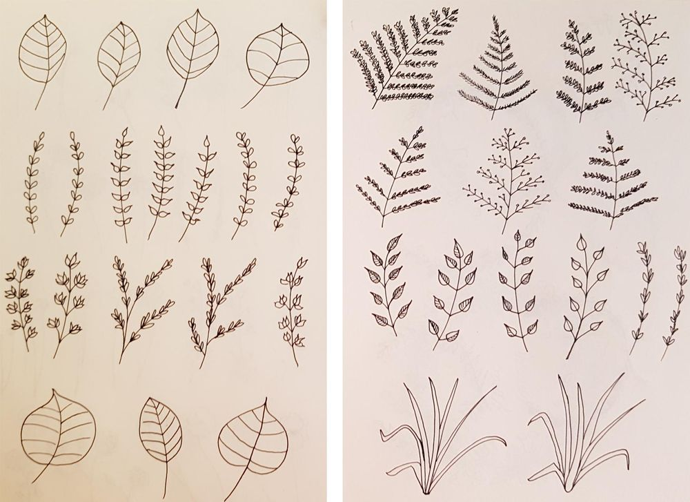 Botanical Line Drawings on Postcards - image 2 - student project