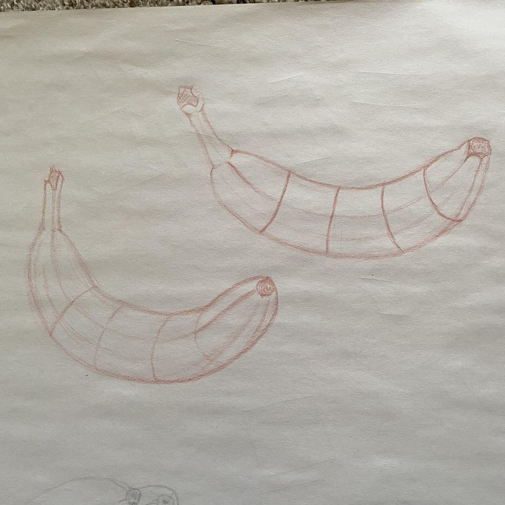Contours/Drawing with Compelling Contours and Foreshortening - image 1 - student project