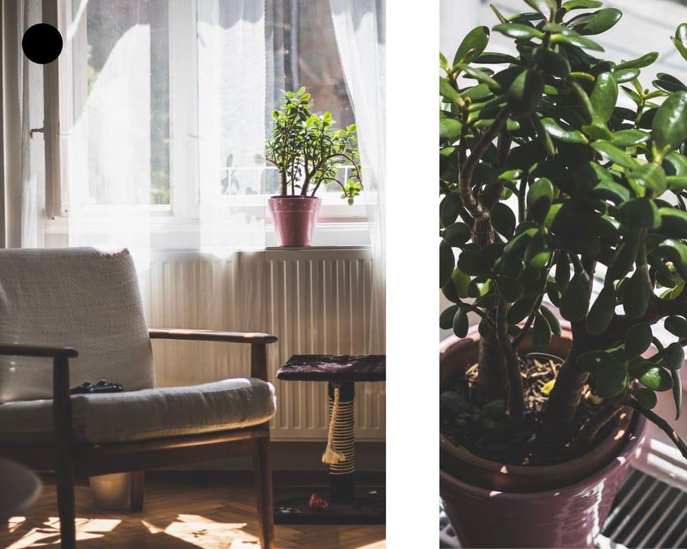 LIVINGroom. - image 3 - student project