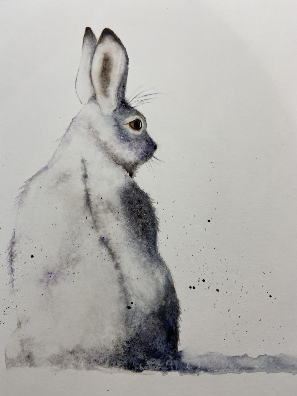 Snow hare - image 1 - student project