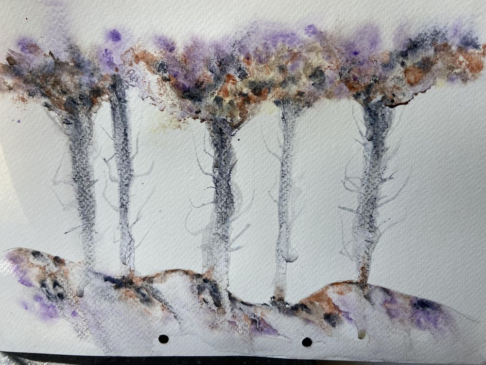 Watercolour projects - image 1 - student project