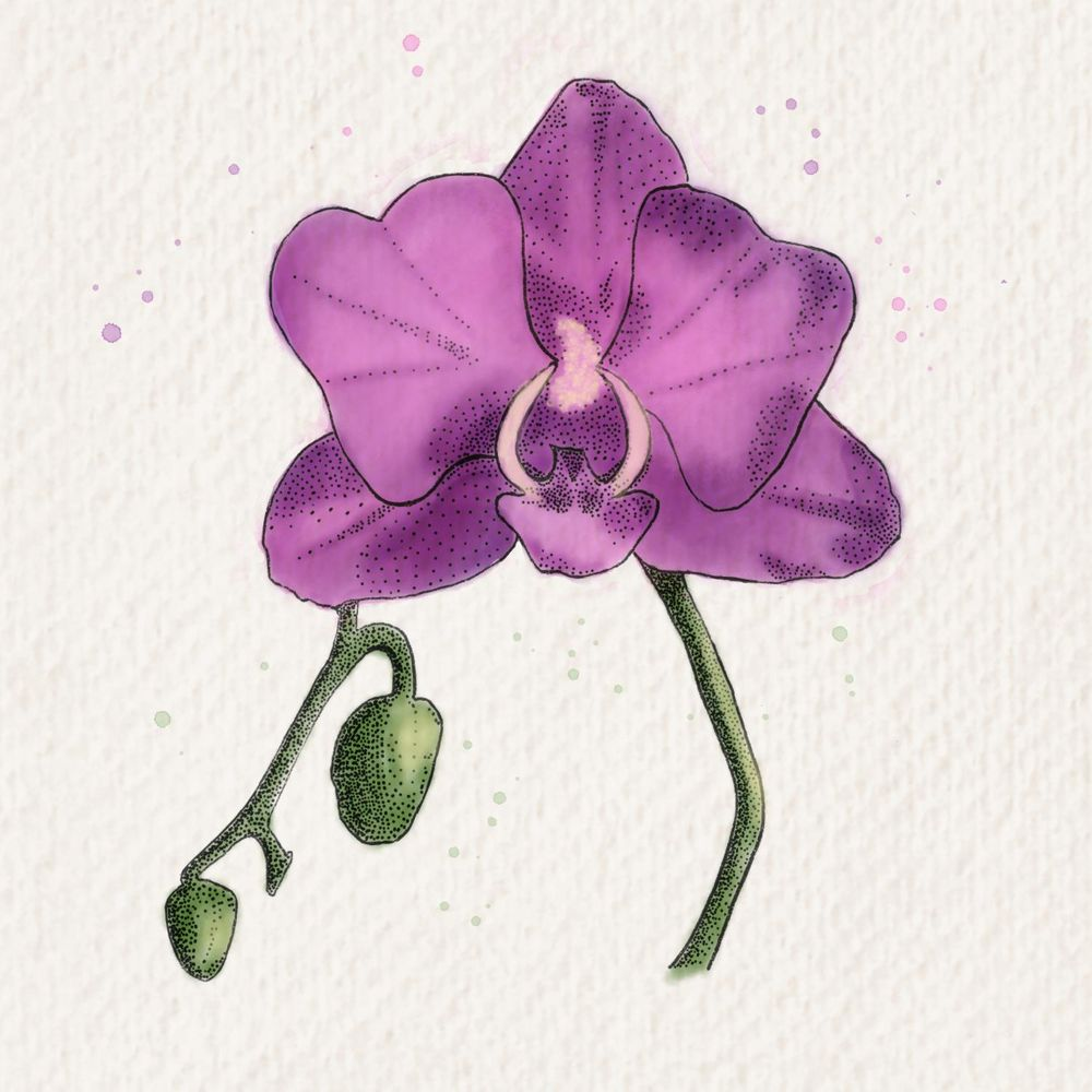 Stamp and watercolor flower - image 1 - student project