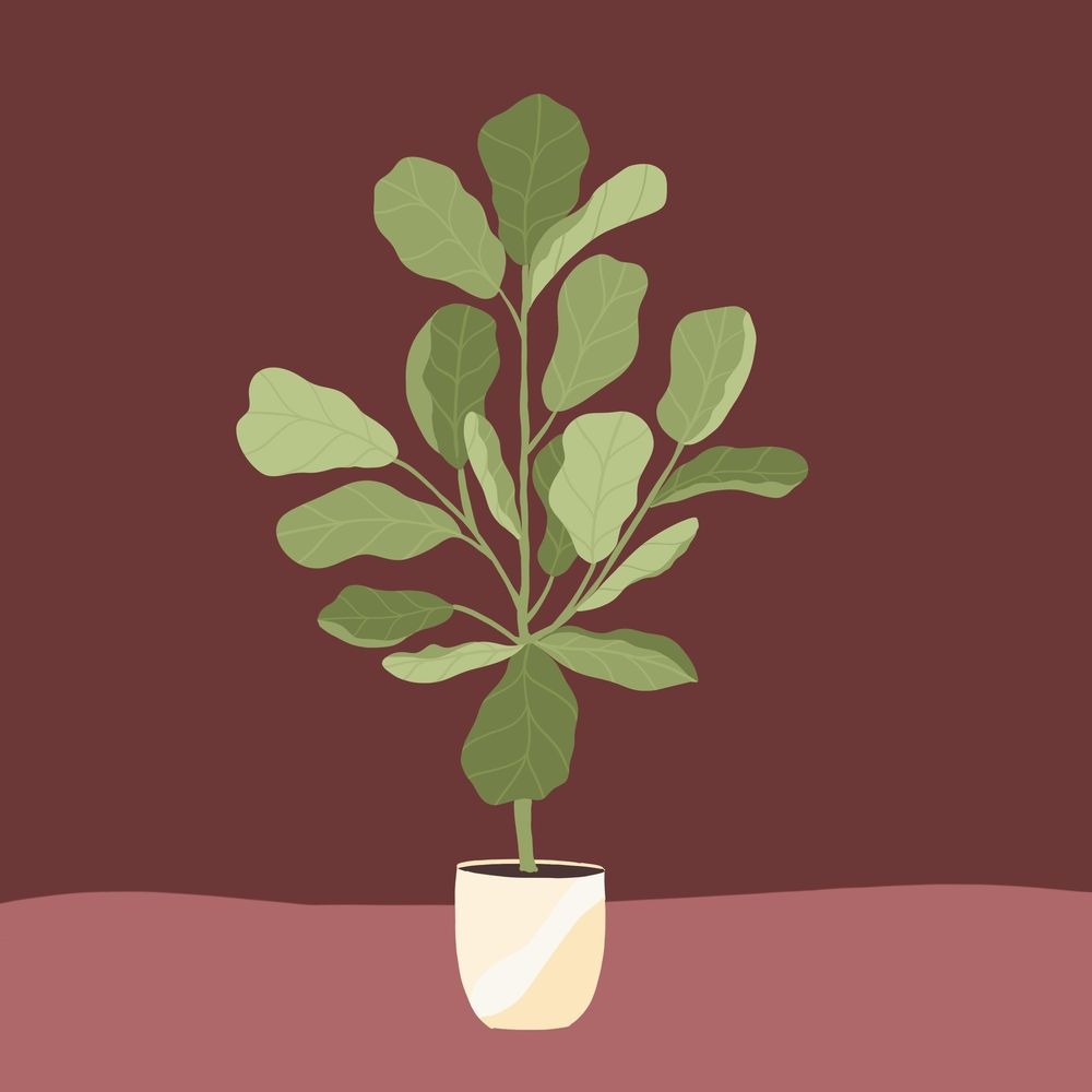 Plant Illustration class - image 2 - student project