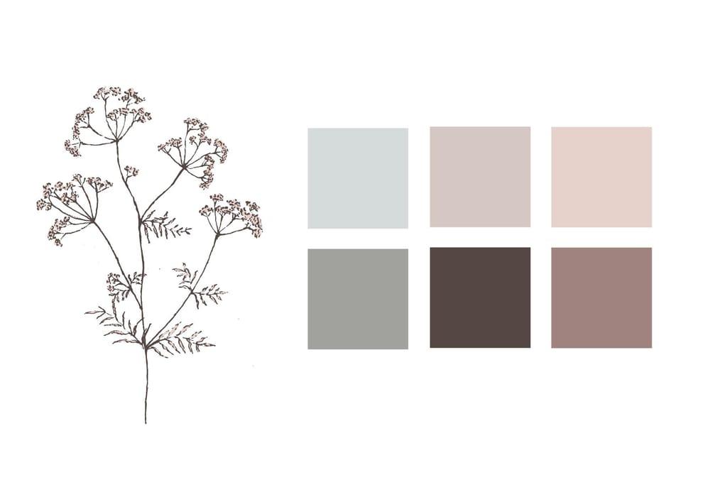 Pencil sketch botanicals - image 4 - student project