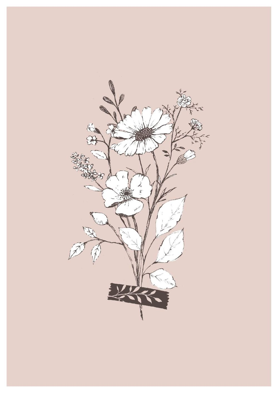 Pencil sketch botanicals - image 7 - student project