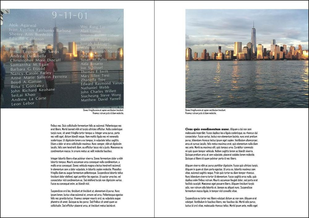 New York Reflections - image 3 - student project