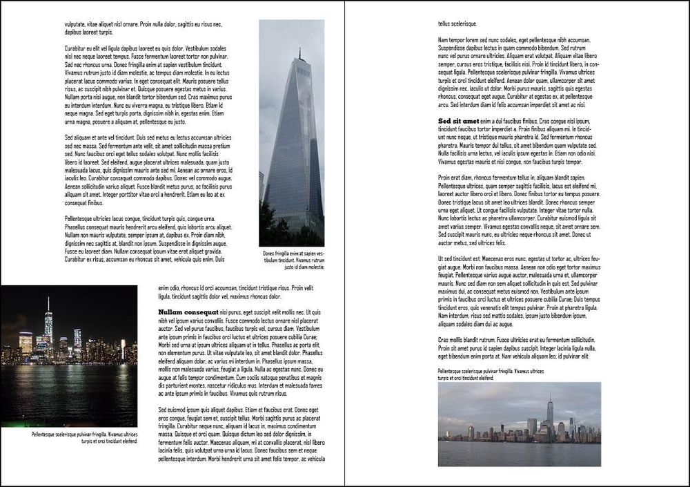 New York Reflections - image 2 - student project