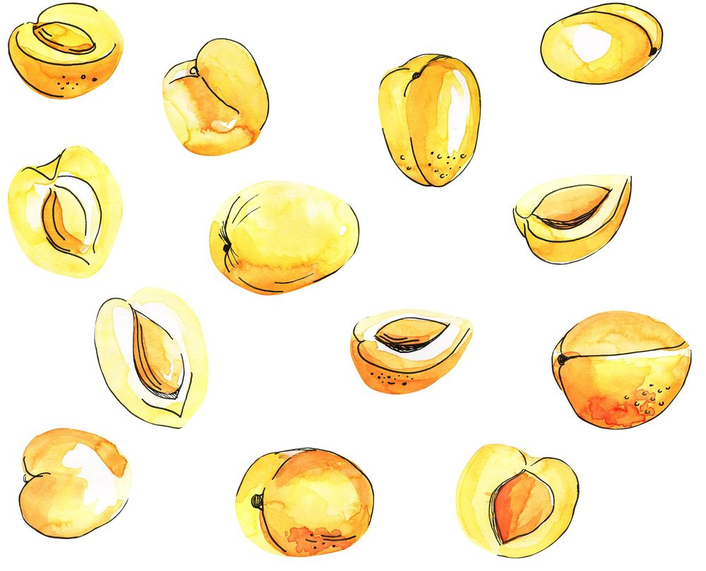 Watercolor fruit pattern - image 3 - student project