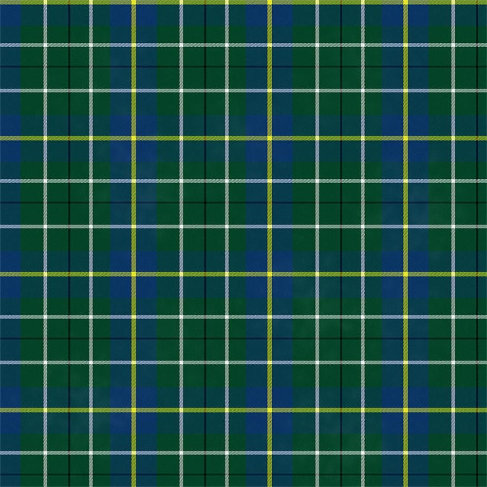 Plaid with Noise - image 1 - student project