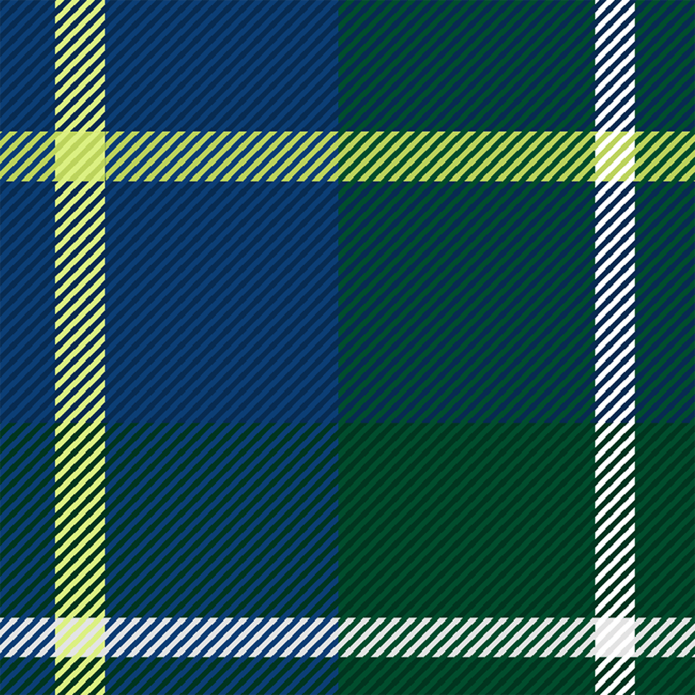 Plaid with Noise - image 3 - student project