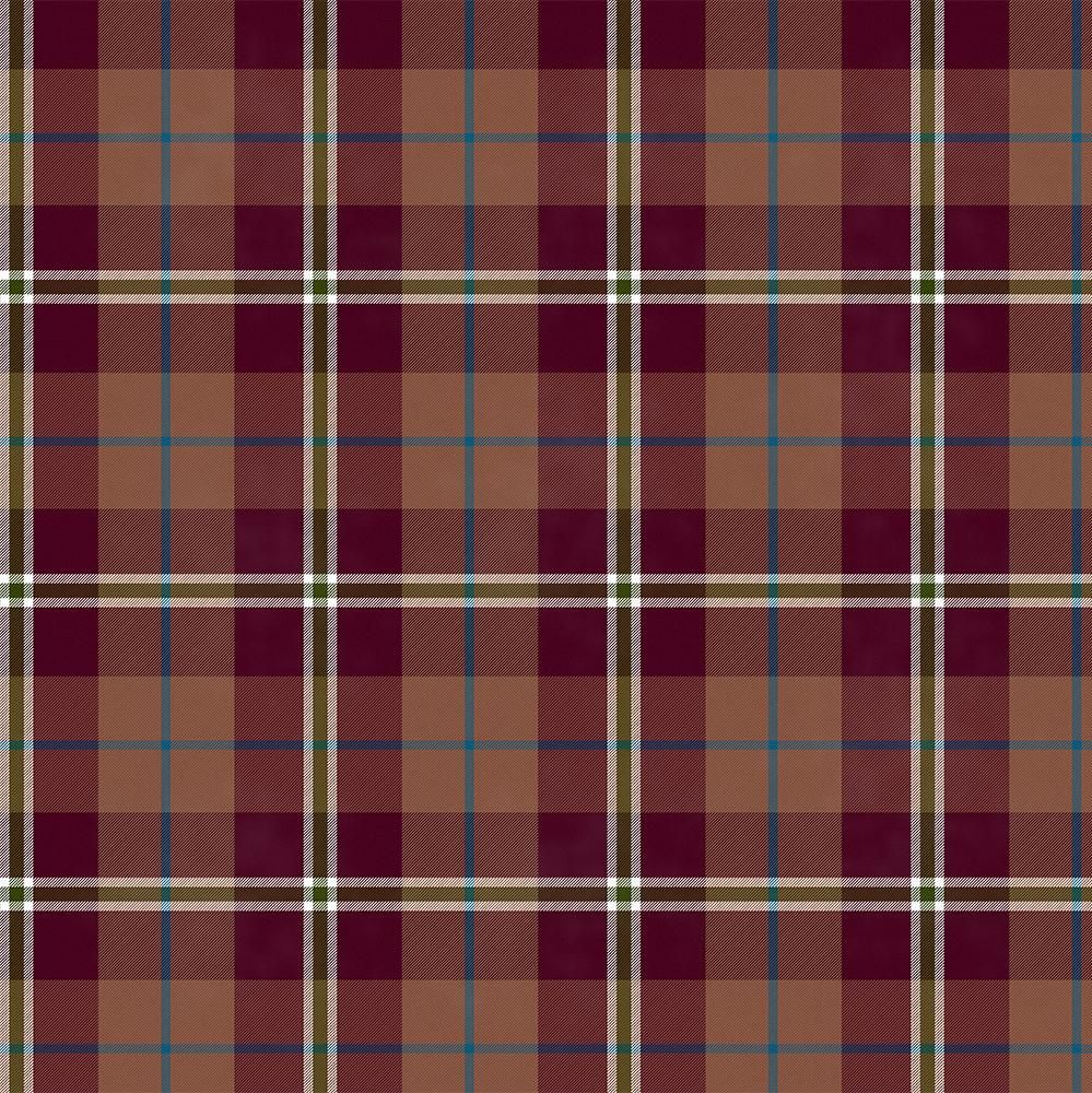 Plaid with Noise - image 2 - student project