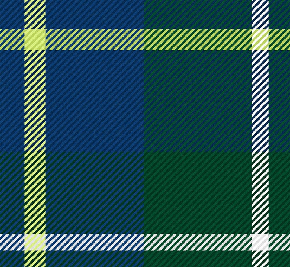 Plaid with Noise - image 4 - student project