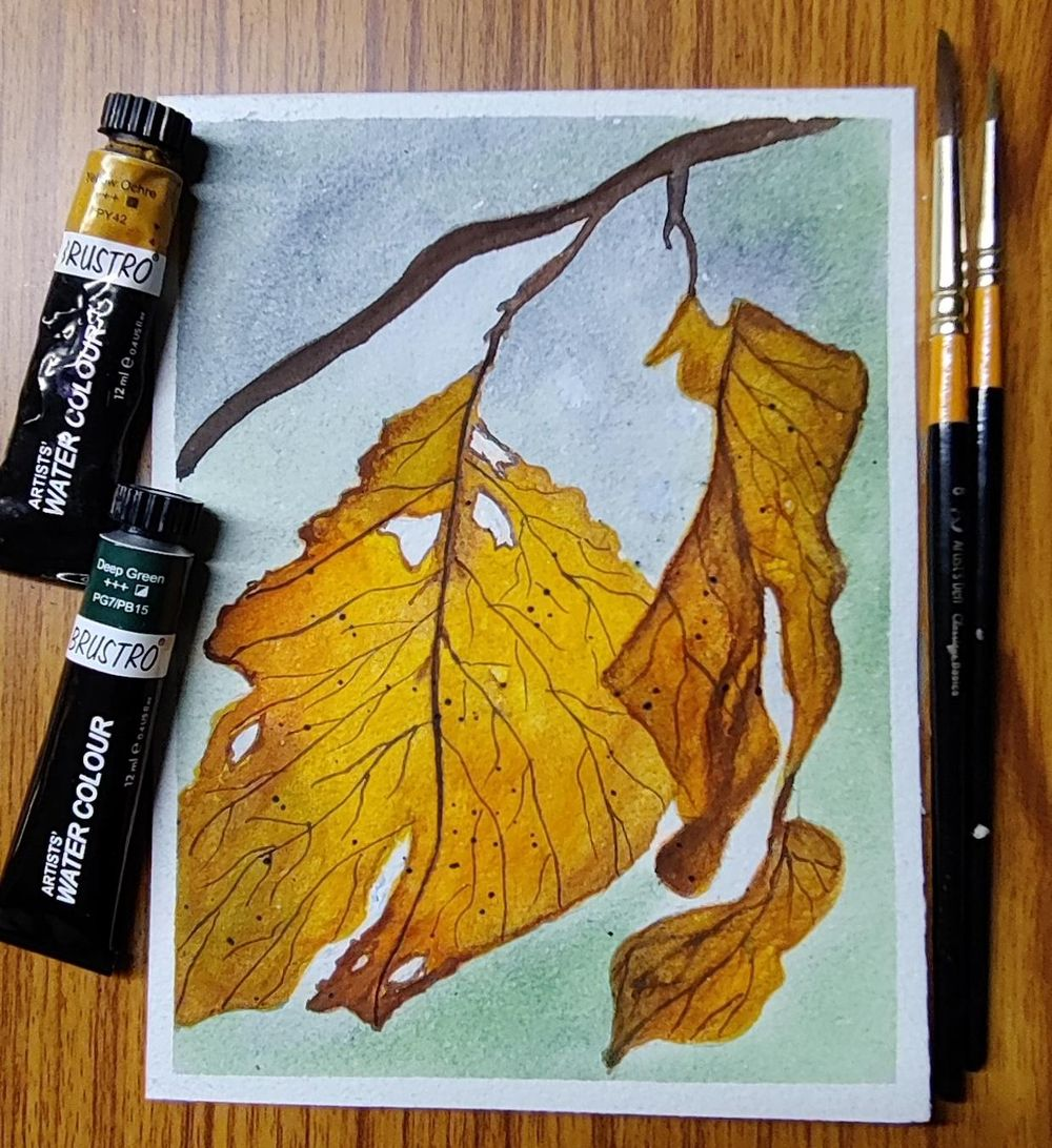 Gorgeous Autumn Landscapes - image 6 - student project