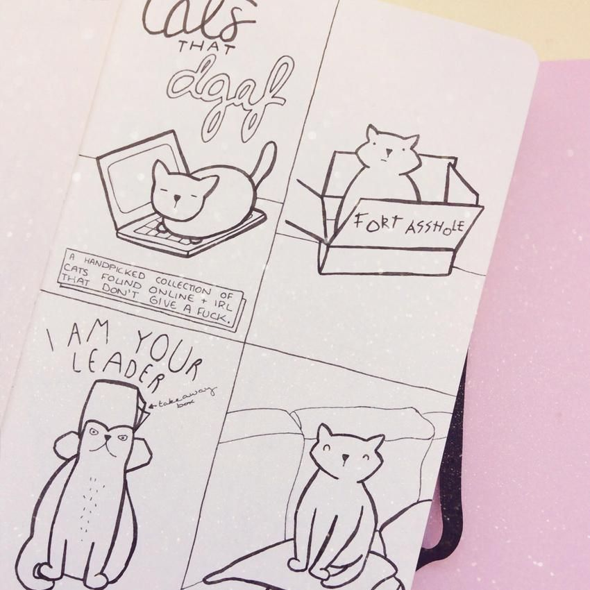 Cats That DGAF - image 2 - student project