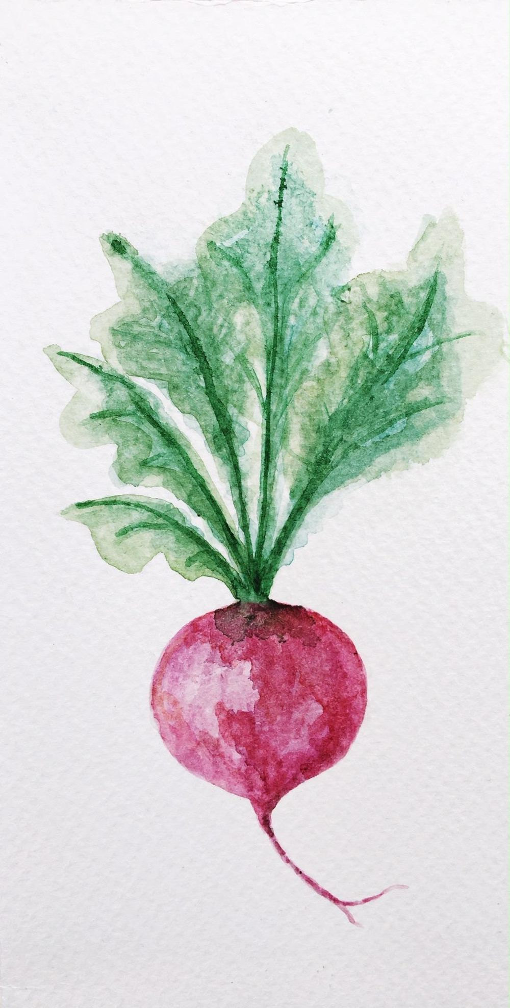 Painting veggies - image 2 - student project