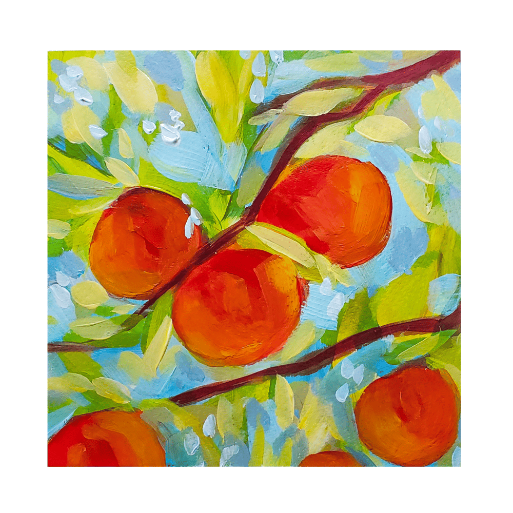 Peaches - image 1 - student project