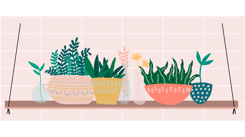 Indoor Plants - From Sketch to Vector - image 2 - student project