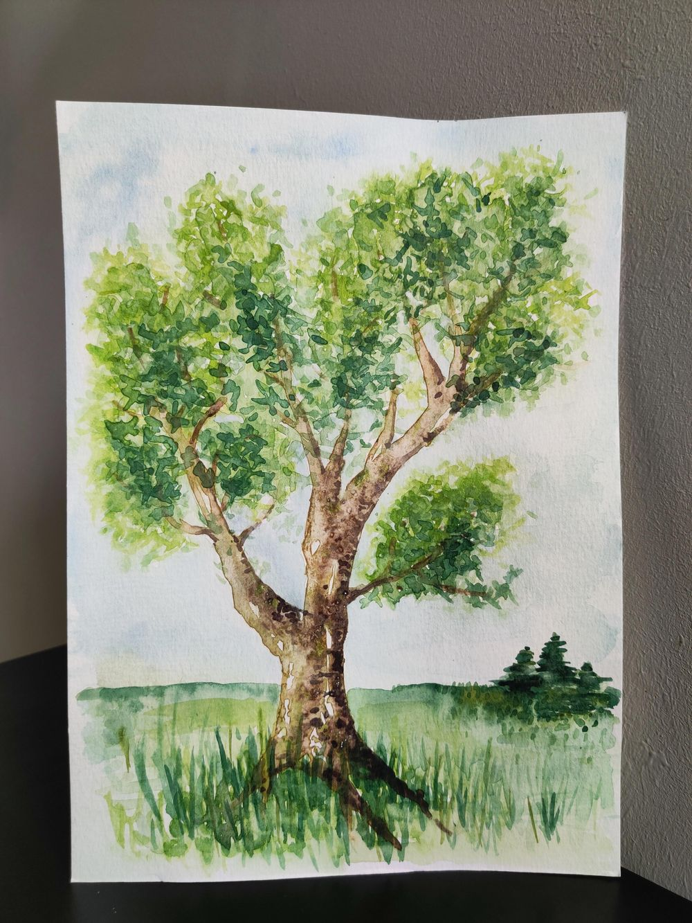 Practice tree : step by step - image 5 - student project