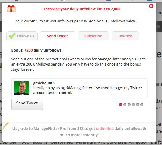 Twitter Marketing in 2017 with Manage Flitter Project - image 4 - student project