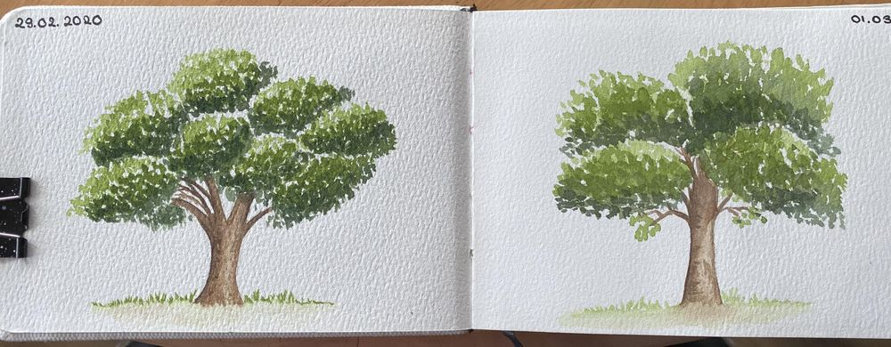 Tree practice - image 1 - student project