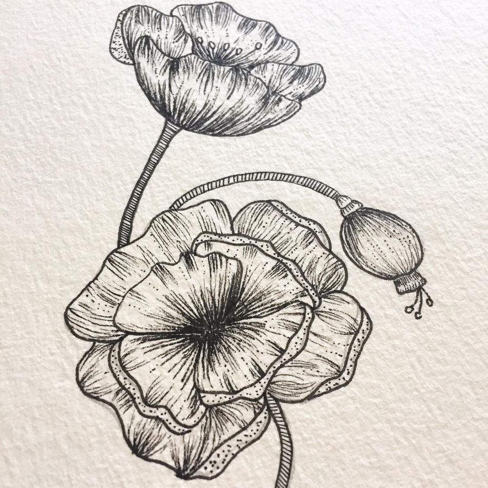 Poppies in a Mason Jar - image 1 - student project