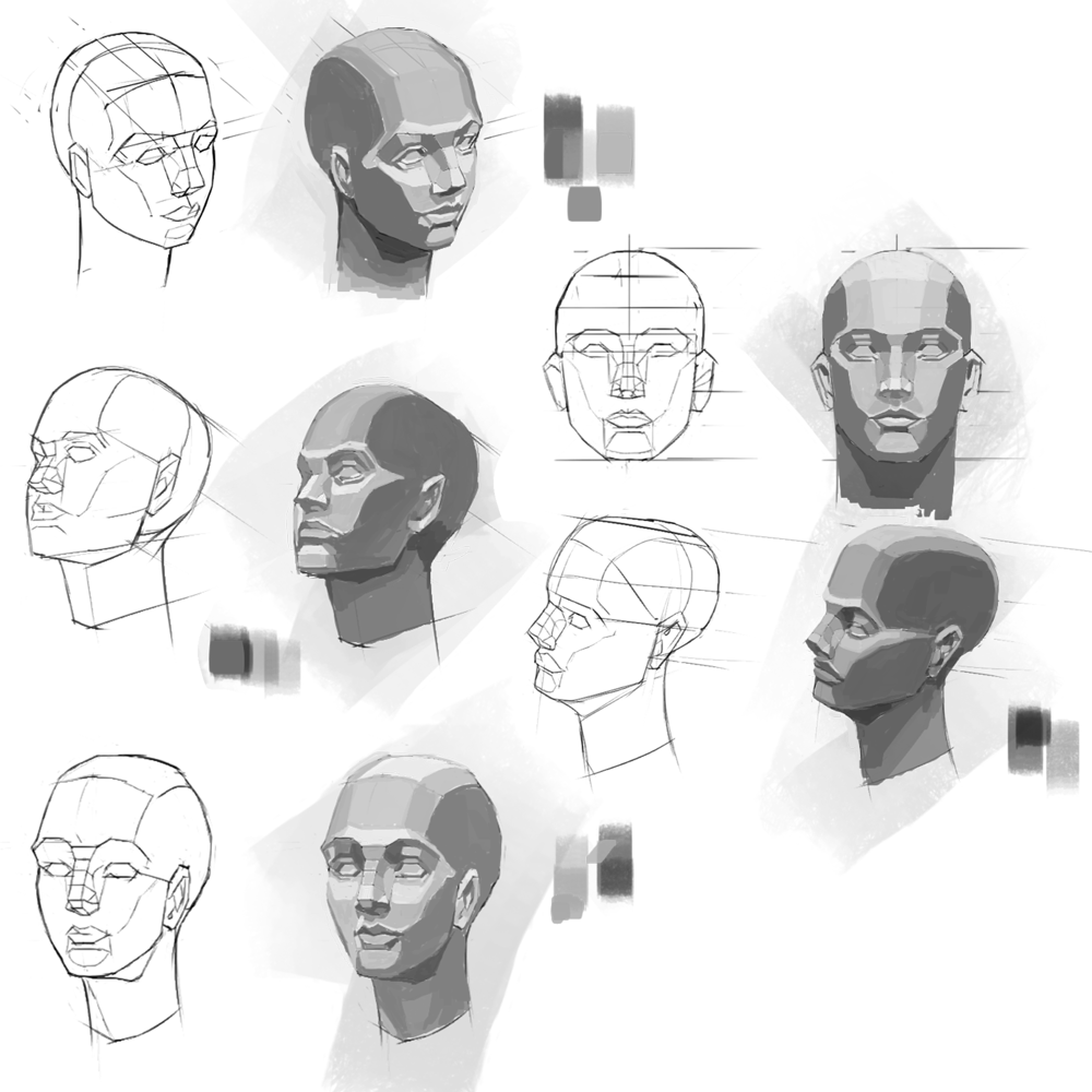Studies - image 1 - student project