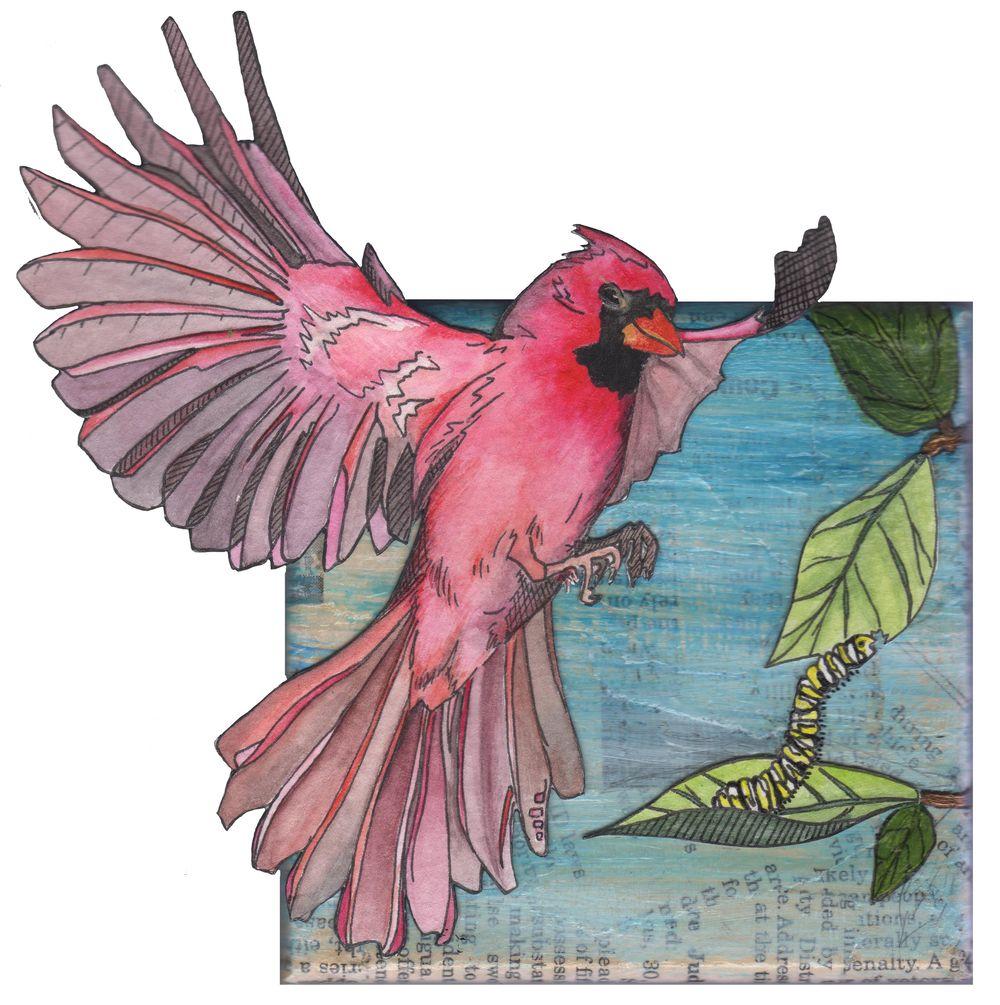 Cardinal - image 1 - student project