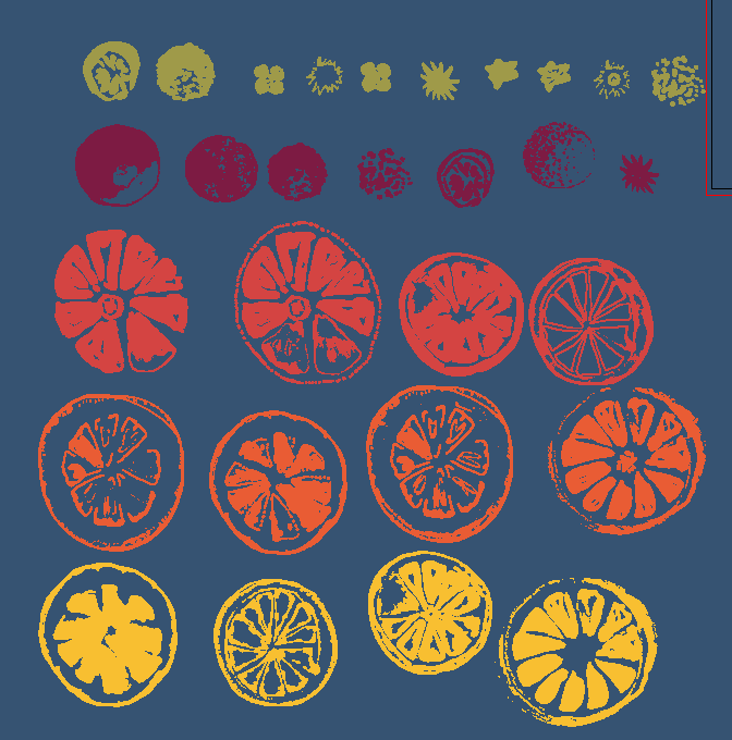 Oranges - image 2 - student project